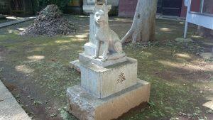 上板橋御嶽神社(桜川御嶽神社) 狼像 (4)