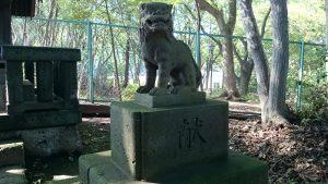 上板橋御嶽神社(桜川御嶽神社) 天祖神社狛犬 (2)