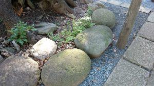 中台稲荷神社 力石