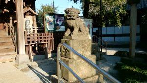 渋江白髭神社(客人大権現) 狛犬 阿