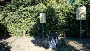 櫻木神社(野田市) 健康のなで石