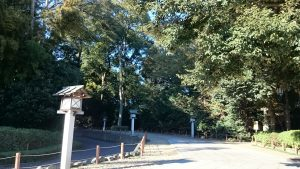 櫻木神社(野田市) 参道