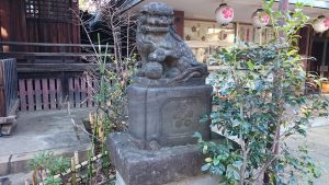 新井天神北野神社 拝殿前狛犬 (2)
