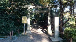 櫻木神社(野田市) 日天社 鳥居