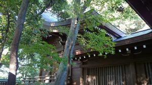 城山熊野神社 本殿