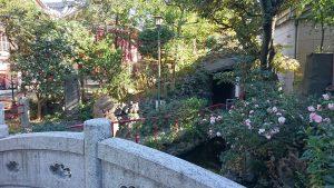江島杉山神社 岩屋付近