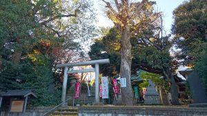 上高田氷川神社 境内風景