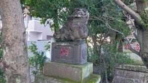 八幡八雲神社 明治42年狛犬 吽