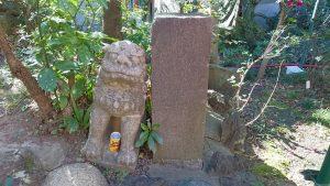 江島杉山神社 杉多稲荷神社 狛犬