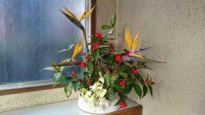 五柱稲荷神社 社務所玄関の生花