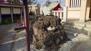 志茂熊野神社 狛犬 吽