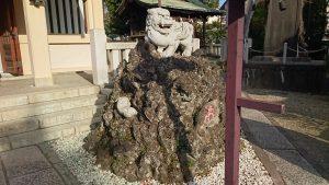 志茂熊野神社 狛犬 阿