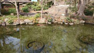 二宮神社(小河大明神) 東京の名湧水57選選出の湧水