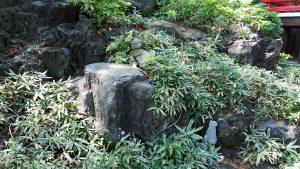 東山稲荷神社(東山藤稲荷神社) 石狐 (2)