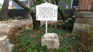 葛飾八幡宮 駒どめの石