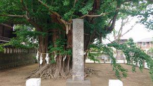 葛飾八幡宮 国指定天然記念物碑