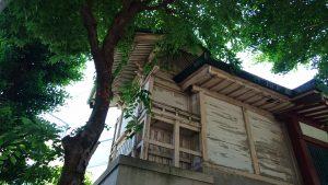 小谷野神社 本殿