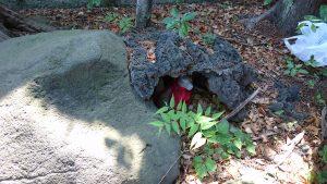 駒込日枝神社(朝日山王宮) 日吉稲荷神社 狐穴