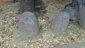 小菅神社 力石