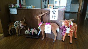 有鹿神社受付 鹿とパンダ人形