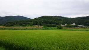 蚕影神社 蚕影山