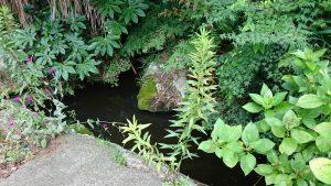蚕影神社 湧水地