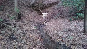 有鹿神社 奥宮 湧水の流れ