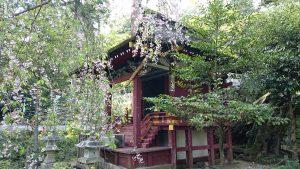 筑波山神社 厳島神社 社殿