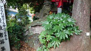 大島稲荷神社 狛犬 阿